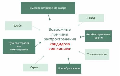 Причины развития кандидоза в кишечнике