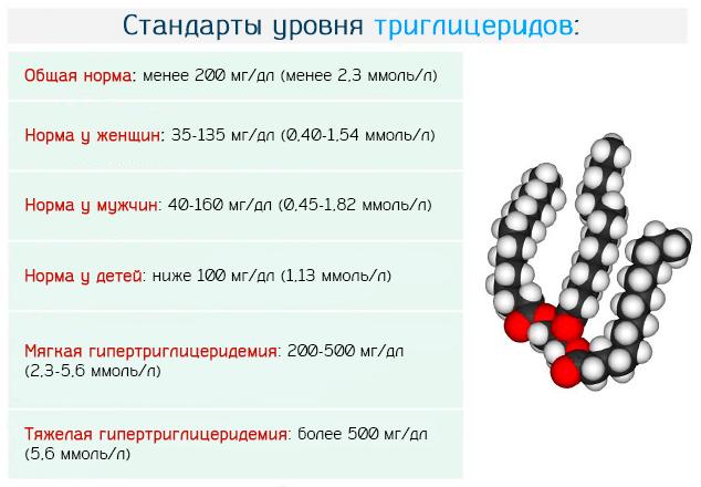 Нормы концентрации триглицеридов в крови человека