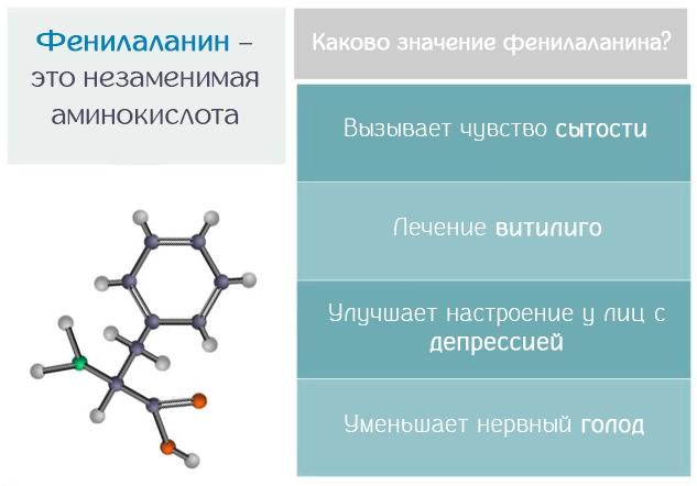 Фенилаланин – это незаменимая аминокислота