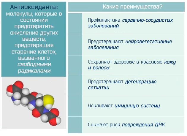 Преимущества антиоксидантов в борьбе со свободными радикалами и активными формами кислорода