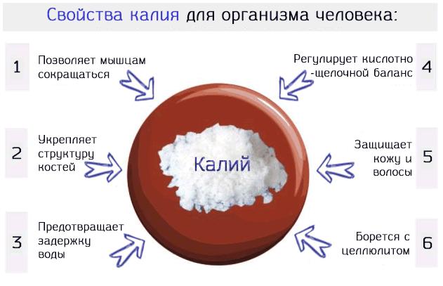 Описание свойств калия для организма человека