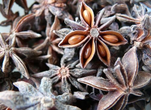 Сушенные семена аниса активно используются в кулинарии
