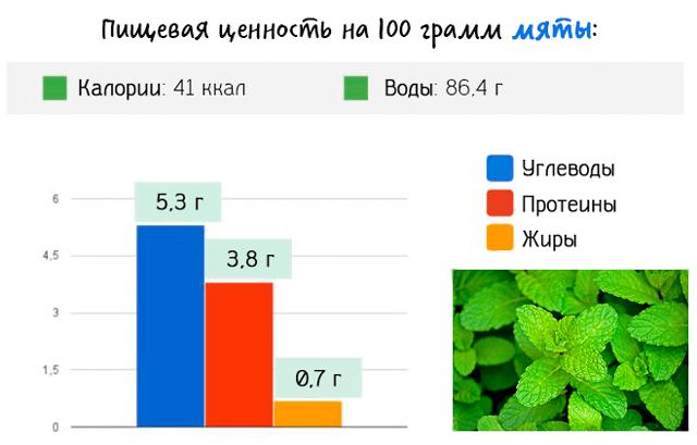 Пищевая ценность 100 грамм мяты