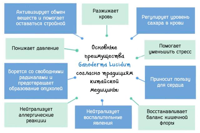 Основные преимущества Ganoderma Lucidum согласно традициям китайской медицины