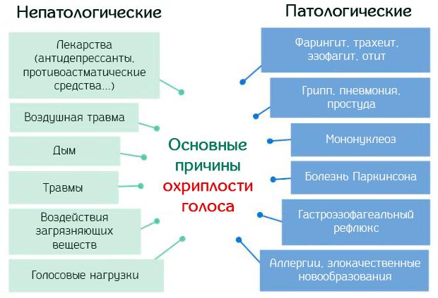 раздел здорового образа жизни