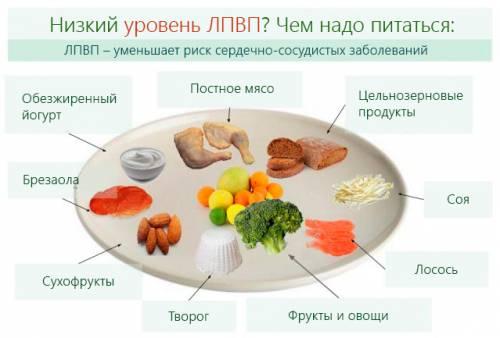 Какими продуктами питаться при низком уровне ЛПВП