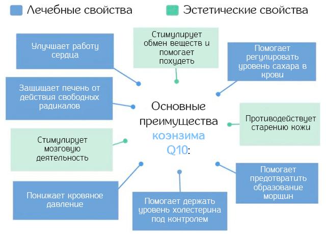 Основные преимущества коэнзима Q10 для организма человека