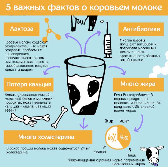 5 важных фактов о последствиях употребления коровьего молока