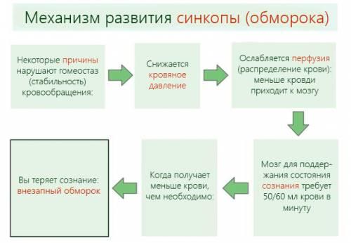 Механизм развития синкопы