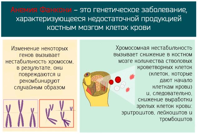 Выживаемость при апластической анемии