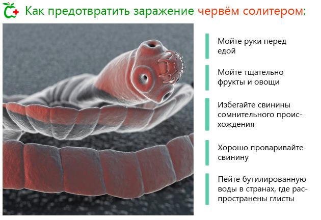 Как предотвратить заражение червём солитером