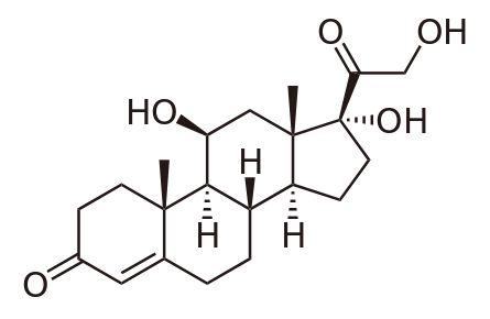 Схема молекулы кортизола