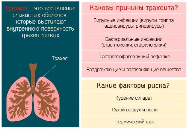 Каковы причины трахеита