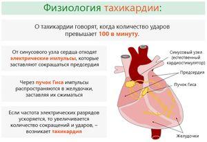 Тахикардия это частота сердечных сокращений в пределах