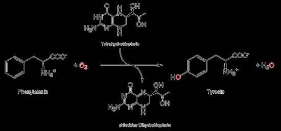 исследование уровня холестерина липопротеидов высокой плотности