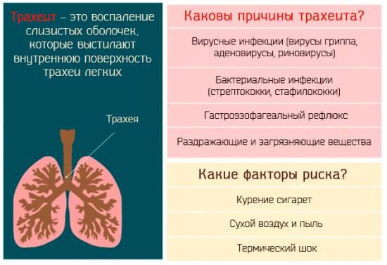 Как ВЫЛЕЧИТЬ ТРАХЕИТ дыхательных путей [4 Физио процедуры]