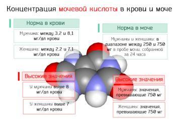 Высокий уровень мочевой кислоты в крови и моче – значение