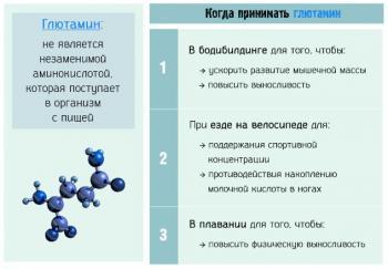 Глютамин – когда рекомендован приём, эффекты и противопоказания