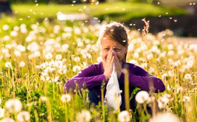 Девушка на лугу с одуванчиками страдает от аллергии