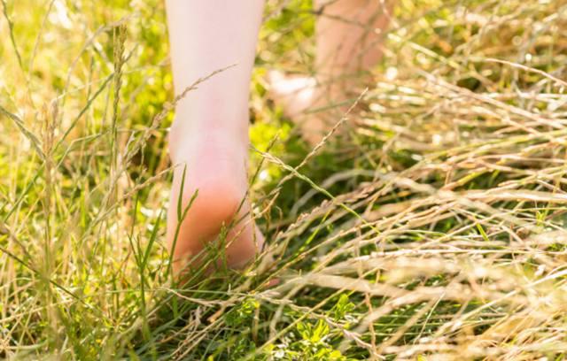 Босые ноги шагают по луговой траве