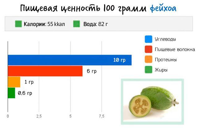 Пищевая ценность 100 грамм плодов фейхоа