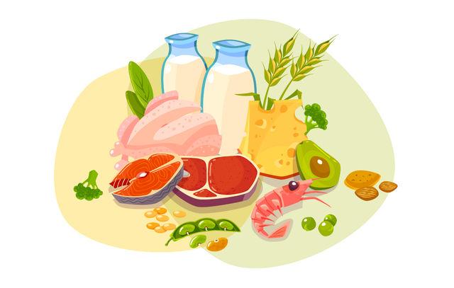 Продукты питания с высоким содержанием полезных белков