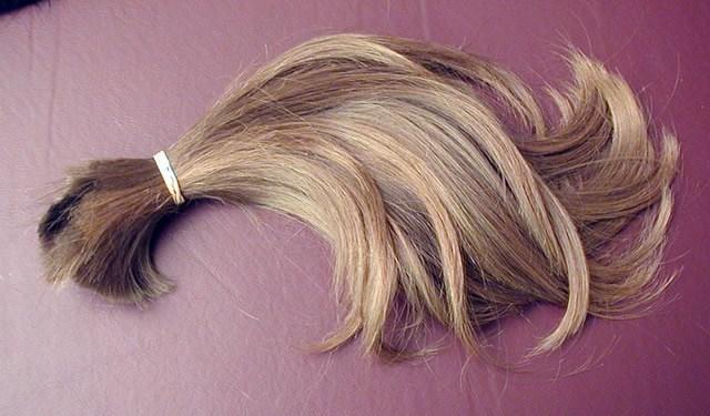 Пучок женских волос