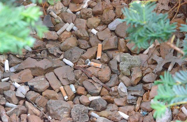 Сигаретные окурки среди камней