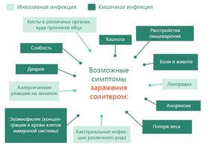 Возможные симптомы заражения солитером
