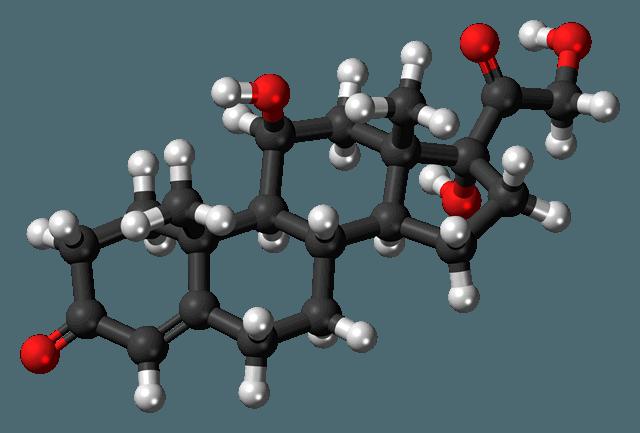 Трехмерная модель молекулы кортизола