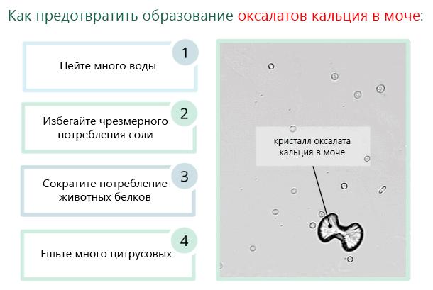 Как предотвратить образование оксалатов кальция в моче
