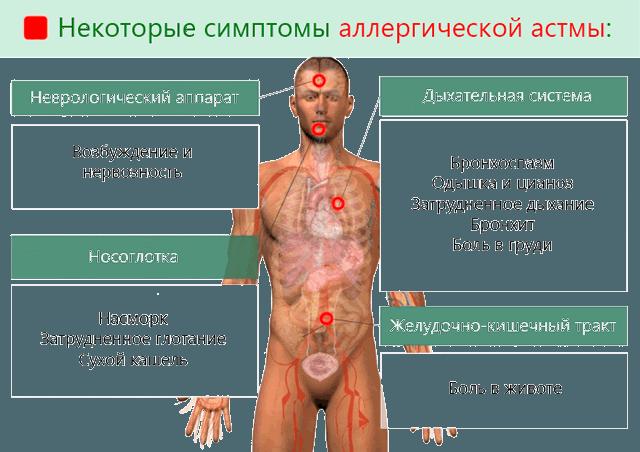 Некоторые симптомы аллергической астмы