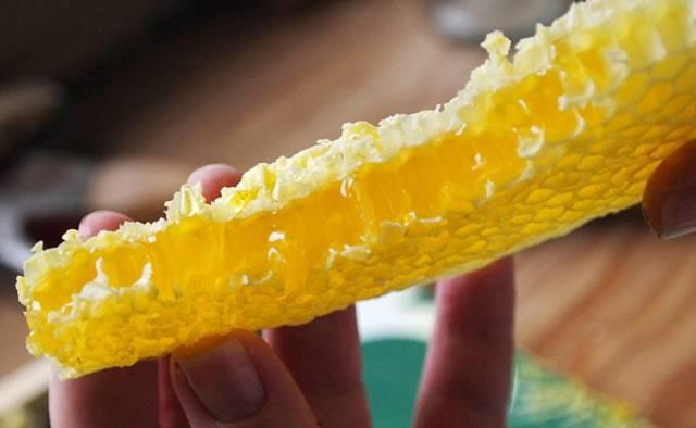 Кусок свежего сотового мёда