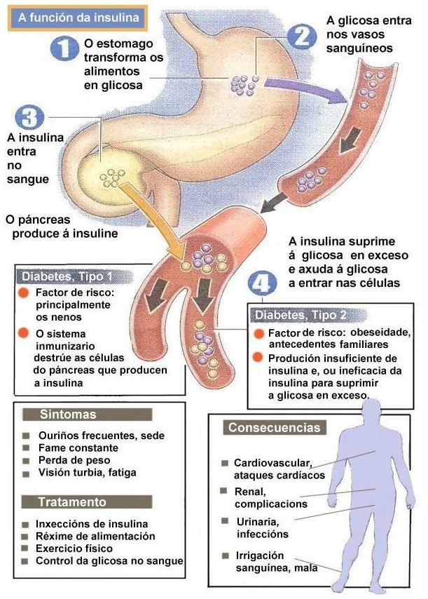 protokol-lechenie-saharnogo-diabeta