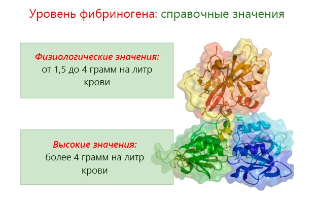 Уровень фибриногена: справочные значения