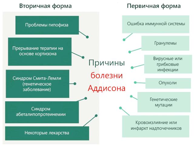 Причины болезни Аддисона первичной и вторичной формы