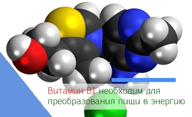 Витамин B1 необходим для преобразования пищи в энергию
