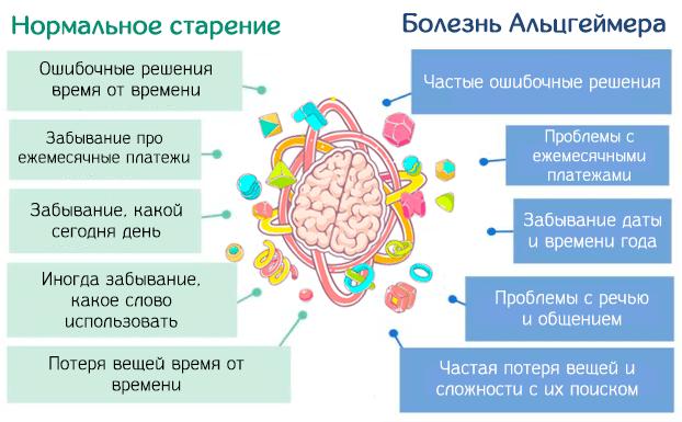 Различия между нормальным старением и болезнью Альцгеймера