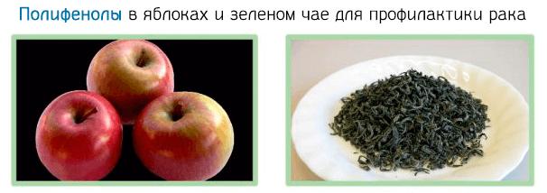 Полифенолы в яблоках и зеленом чае для профилактики рака