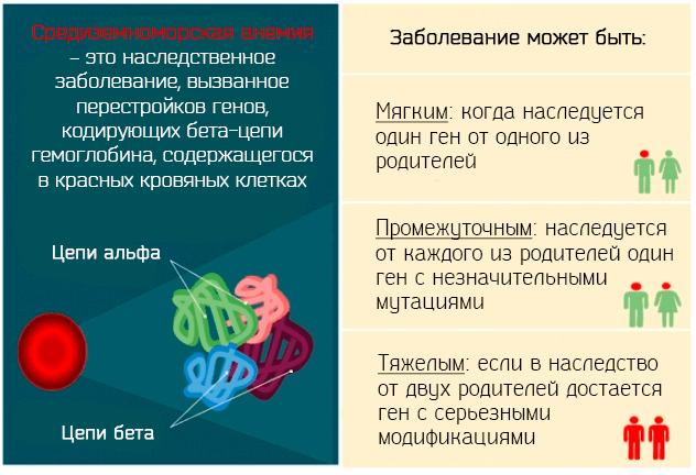 Средиземноморская анемия – это наследственное заболевание, вызванное перестройкой генов
