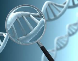 ДНК спираль под лупой